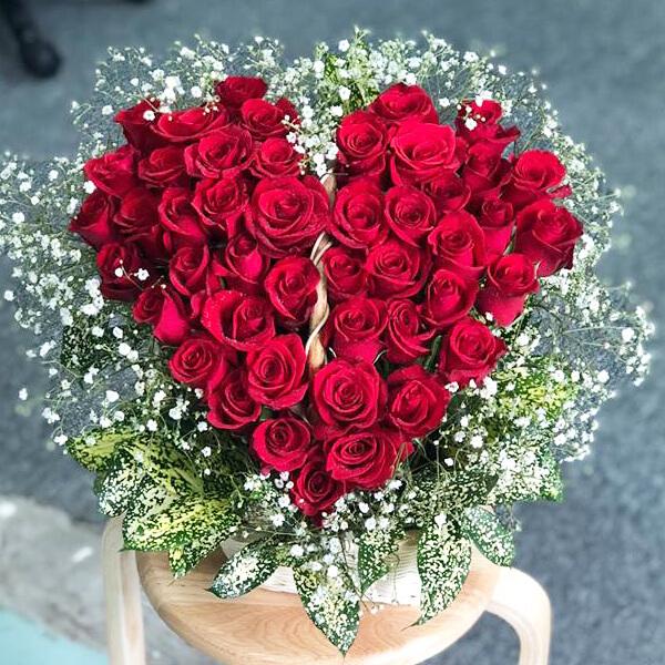 Bài văn tả hoa hồng số 8