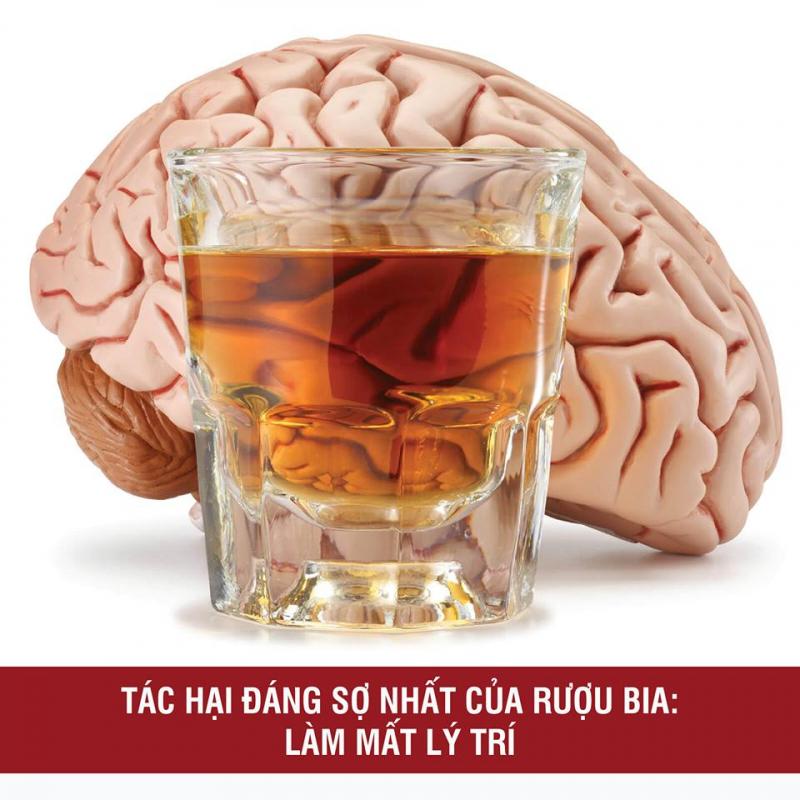 Bài văn thuyết minh về tác hại của rượu số 2