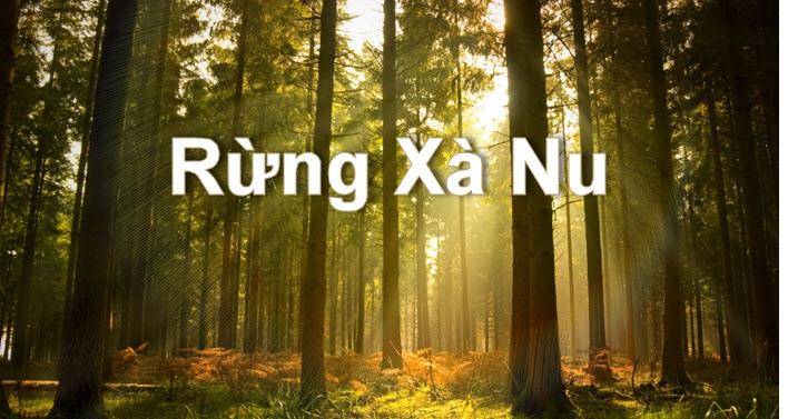 Bài văn phân tích hình tượng rừng xà nu số 7