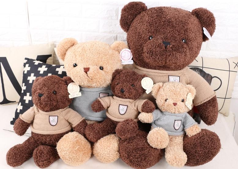 Chú gấu bông mơ ước