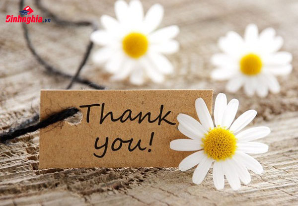 Bài văn nghị luận xã hội về lòng biết ơn số 1