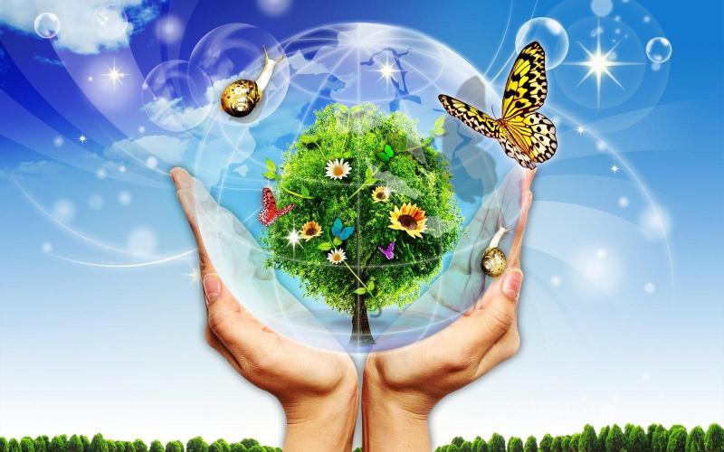 Bài văn chứng minh bảo vệ môi trường là bảo vệ cuộc sống của chúng ta số 7