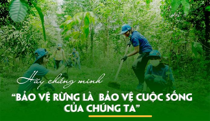 Bài văn chứng minh rằng bảo vệ rừng là bảo vệ cuộc sống của chúng ta số 6