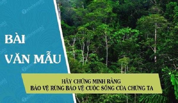 Bài văn chứng minh rằng bảo vệ rừng là bảo vệ cuộc sống của chúng ta số 9