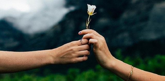 Bài văn nghị luận xã hội về lòng vị tha số 3
