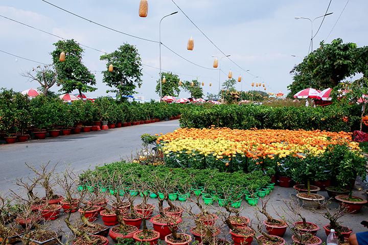 Bài văn tả cảnh chợ hoa ngày tết quê em số 6