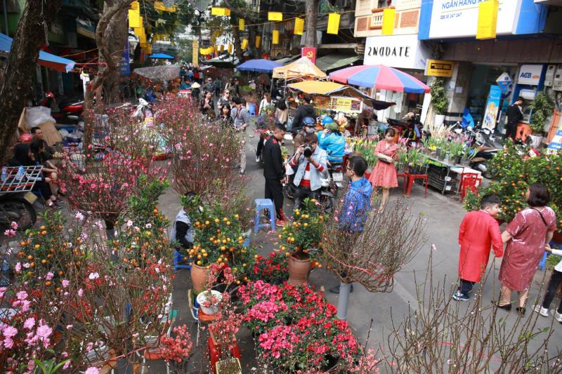 Bài văn tả cảnh chợ hoa ngày tết quê em số  2