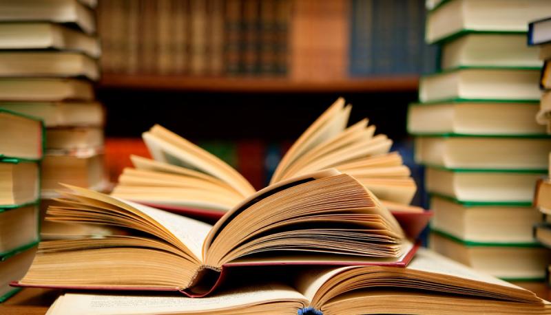 Bài văn thuyết minh về quyển sách giáo khoa Ngữ văn lớp 6 số 10